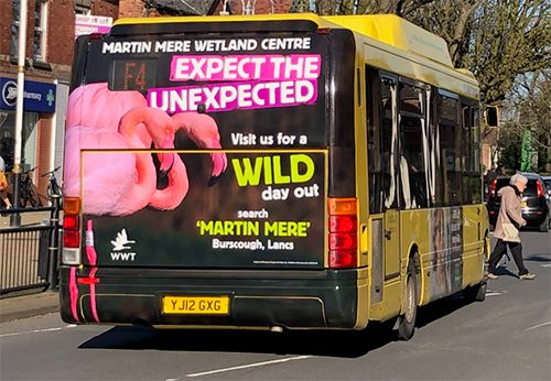 Martin Mere Uses Bus Advertising